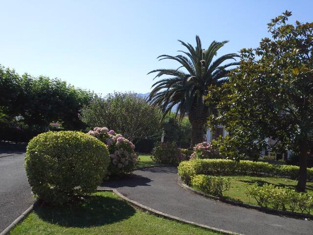 Jardín de los apartamentos San Pedro