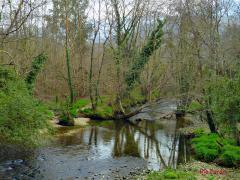 Ruta del Río Purón