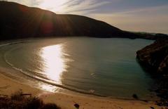 Entrega de la Q de Calidad a las playas de Llanes