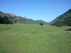 Alto de la Tornería- Valle de Viango-Purón